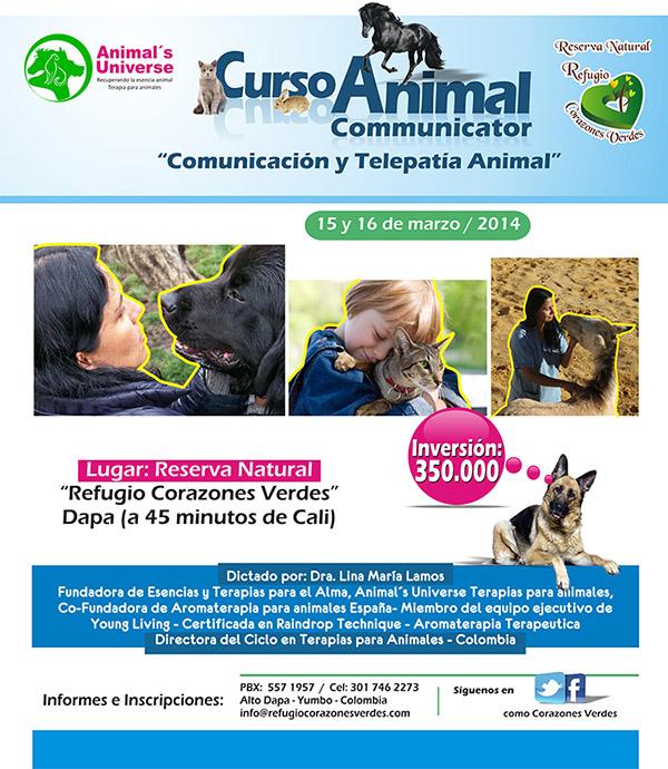 Banner Taller de Telepatia Animal Corazones verdes